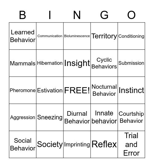 Animal Behavior Bingo Card