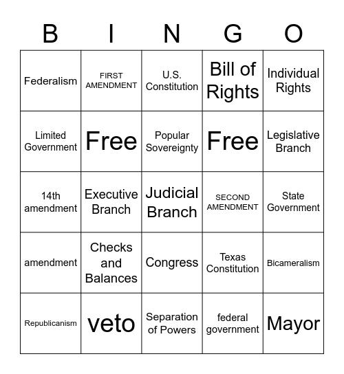 Government Review Bingo Card