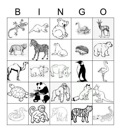 Zoo Bingo Card