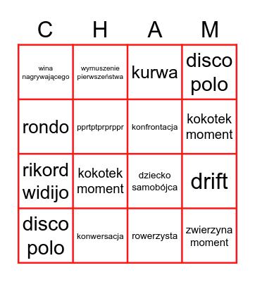 stop czam Bingo Card