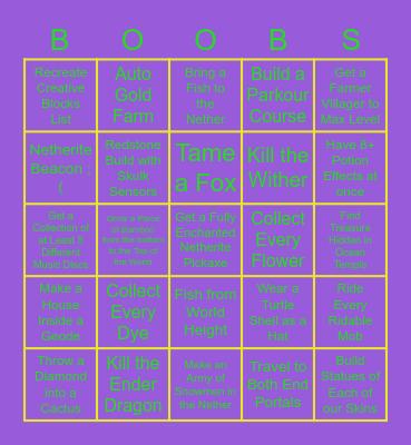 Boysville 2 Minecraft Bingo Card