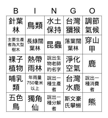 森林生態系 Bingo Card