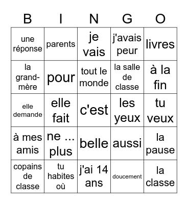 Chapitre 5 havo 2 CH8 leestekst Bingo Card