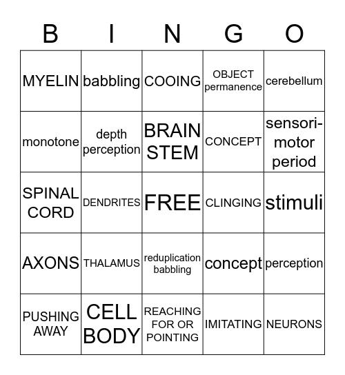 Infant Intellectual Devleopment Bingo Card