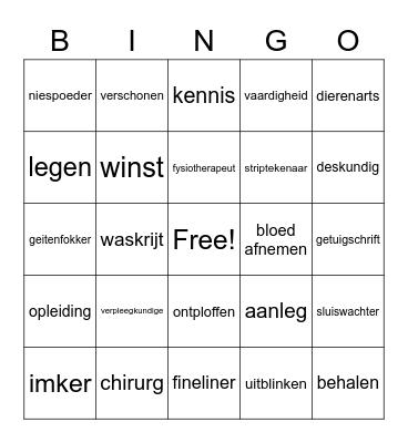 Taalwoorden Bingo Card