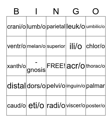 Body Structure Bingo Card