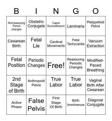 Chapter 8-11 Bingo Card