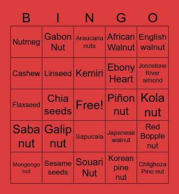 FOXY'S FAMILY. Nuts Bingo Card