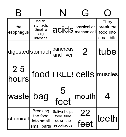 Digestive System  Bingo Card