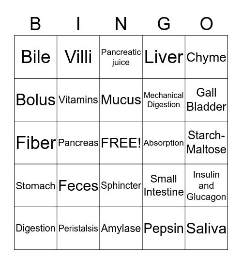 Digestion Bingo Card