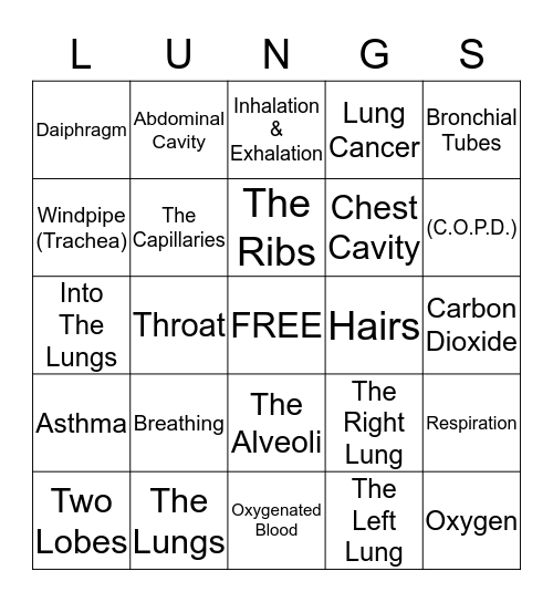 The Respiratory System Bingo Card
