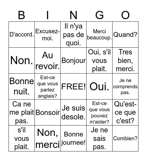 FRENCH 9  C'est magnifique! Bingo Card