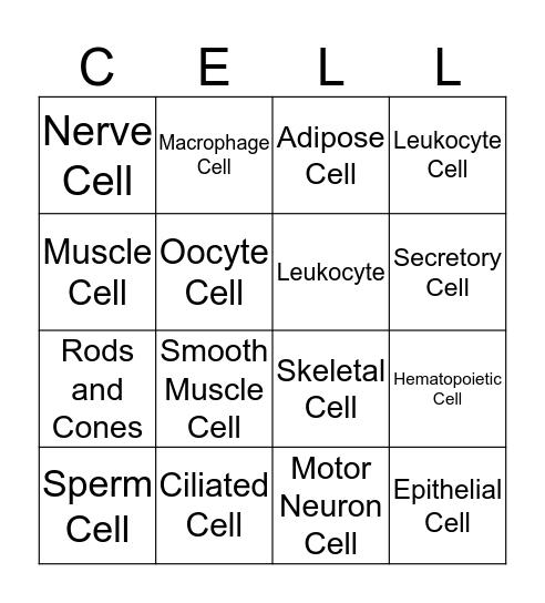 Specialized Cell Bingo Card