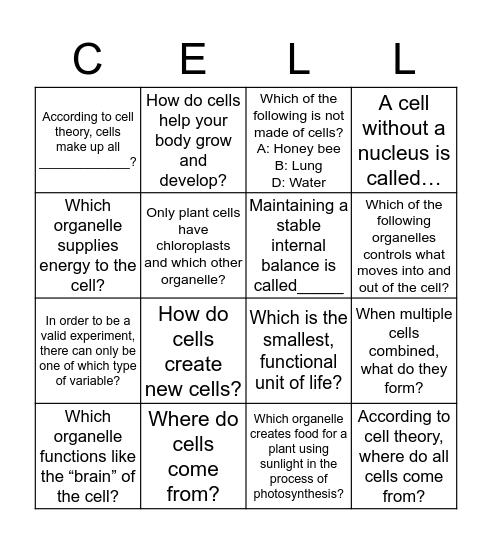 CELLS/ BINGO Card