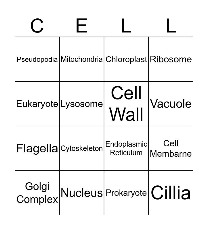 Cell Organelle Bingo Card