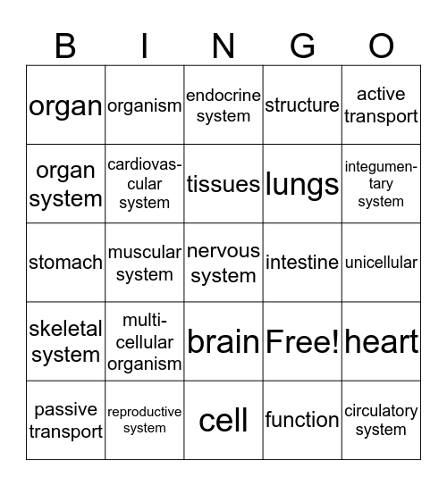 Organization of Living Things Bingo Card