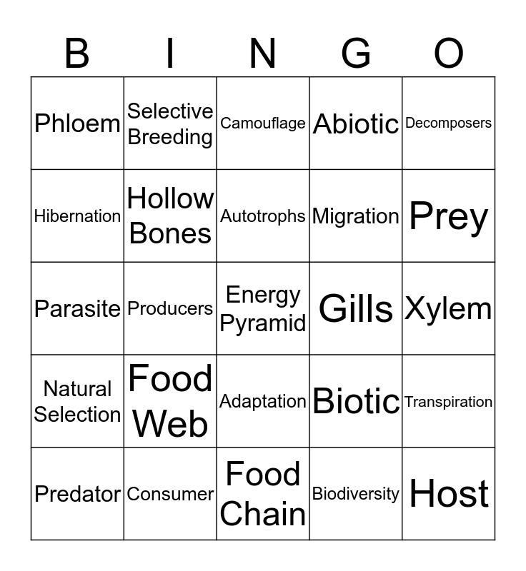 Pre-AP CA 2 Review Bingo Card
