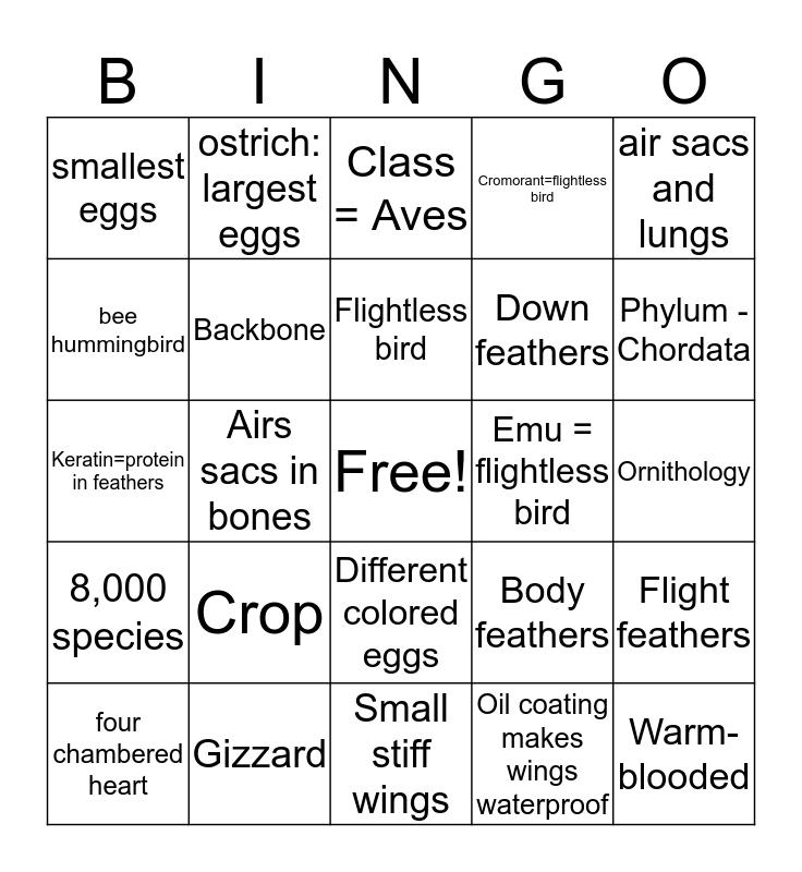 Birds Bingo Card