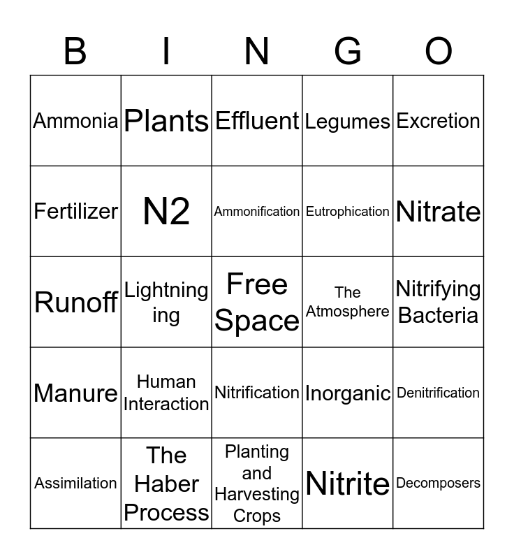 Nitrogen Bingo Card