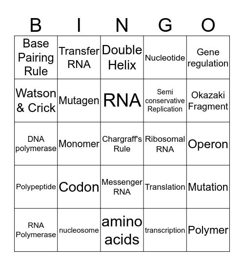 Protein Synthesis  Bingo Card