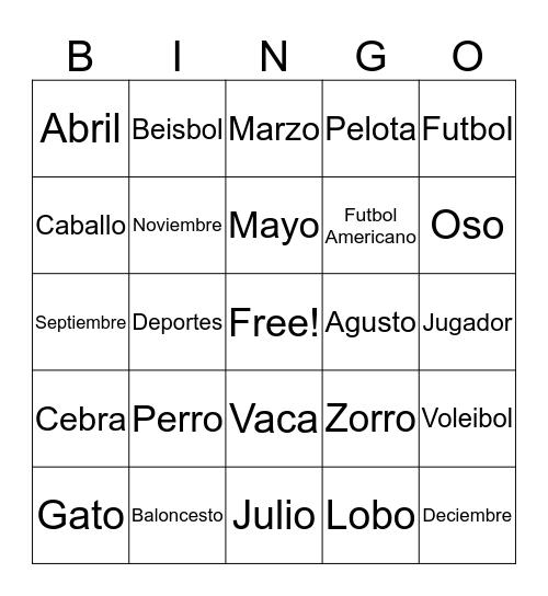 My New Spanish Words! Bingo Card