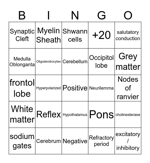 Nervous System Bingo Card