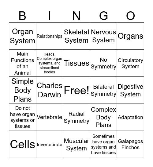 Animal Organization Bingo Card