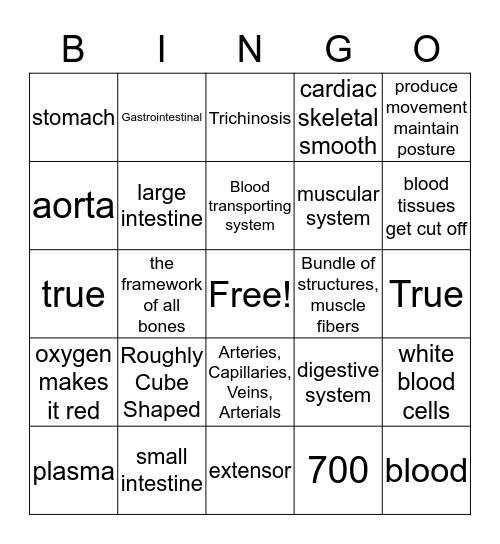 LIZZ&BREE Bingo Card