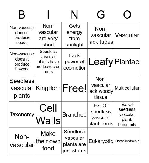 Plantae  Bingo Card