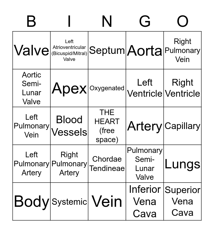 Circulatory System Bingo! Bingo Card
