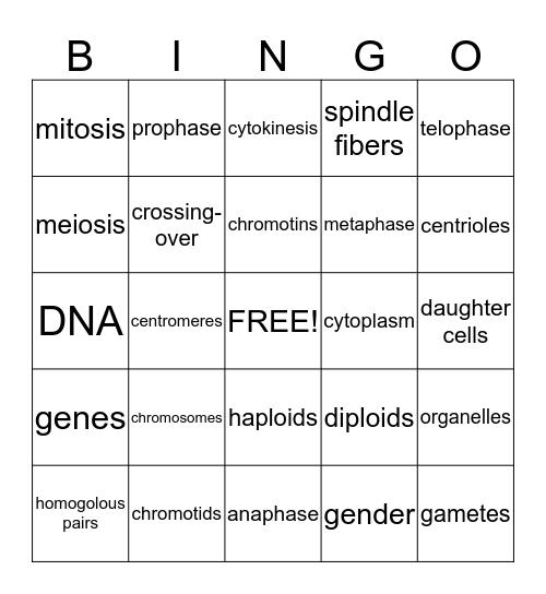 Cell Cycle Bingo Card