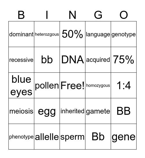 Heredity Bingo Card