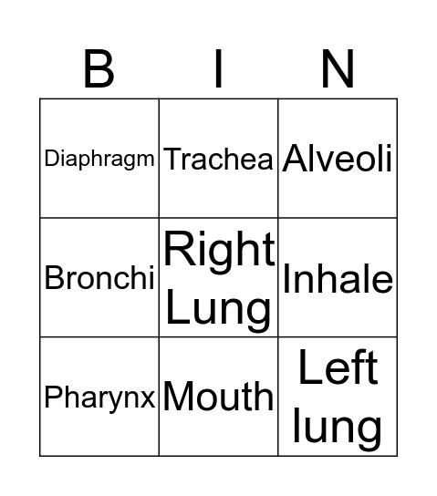 Human Respiratory System Bingo Card
