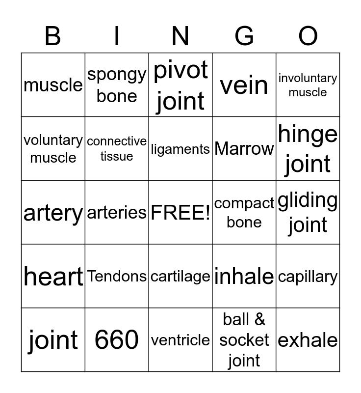 HUMAN BODY SYSTEMS  Bingo Card