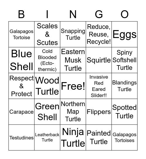 Ontario Turtles Shellebration BINGO Card