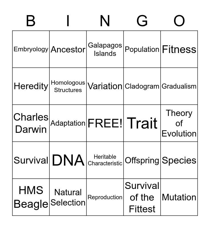 Bingo Darwin