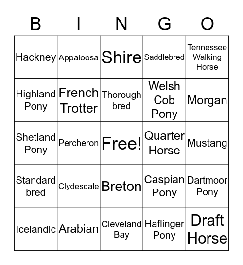 Horse and Pony Bingo Card
