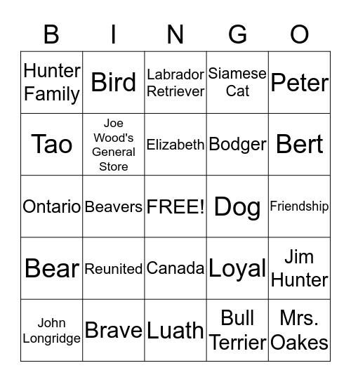 The Incredible Journey Bingo Card