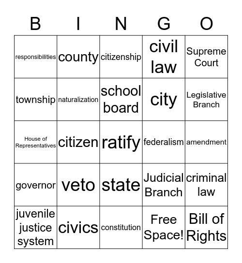US / MN Government Bingo Card